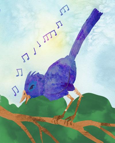 birdinternet